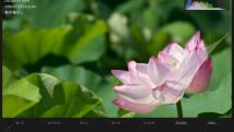 iPad Pro用の「Lightroom for iOS」が超絶便利になってた件、RAWを現像して即時公開も可能に(笠原一輝)