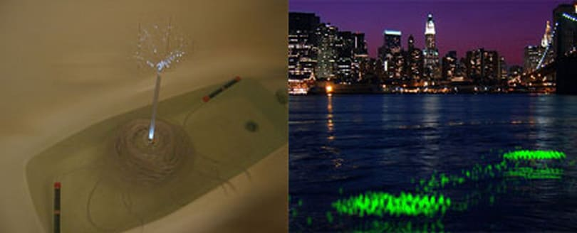 River Glow project detects pollution with style