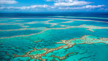 世界の珊瑚礁、99%が今世紀中に消失するとの研究結果。水温上昇を止めるカギはパリ協定に