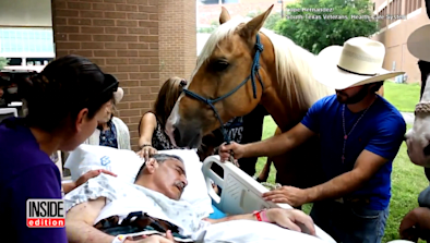 Dying Veteran Has Heartfelt Goodbye With Horse