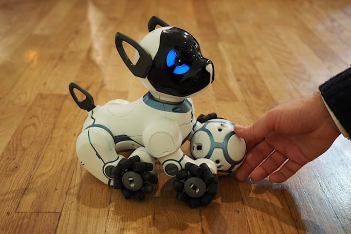 Loyal robot dog waits for you to walk through the door