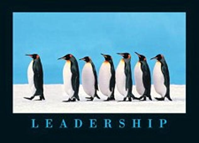 The Daily Grind: Do MMO leadership skills scale?