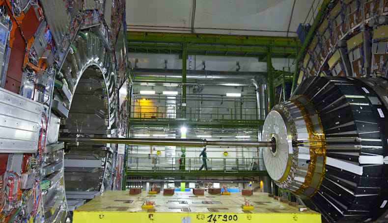 Cord-munching weasel temporarily knocks the LHC offline