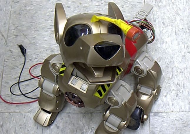 Feral Bots strike again, enlist dogs in their anti-pollution schemes