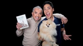 """Cesar And Andre Millan Discuss Their Show, """"Dog Nation"""" And The Book, """"Cesar Millan's Lessons From The Pack"""""""