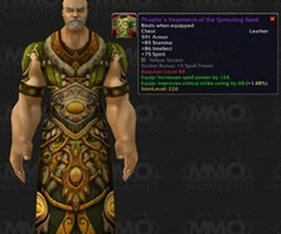 Blizzard honors Resto4Life with an in-game item
