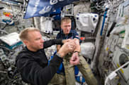 Experiment to determine why astronauts feel weak back on Earth
