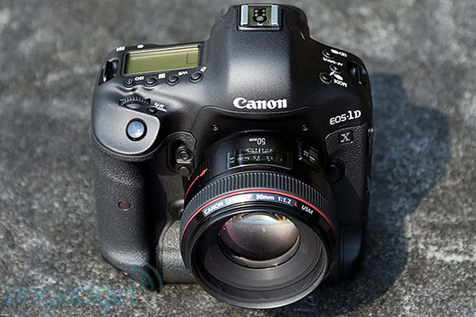 Canon EOS-1D X updates autofocus capabilities, will benefit low-light and wildlife photographers