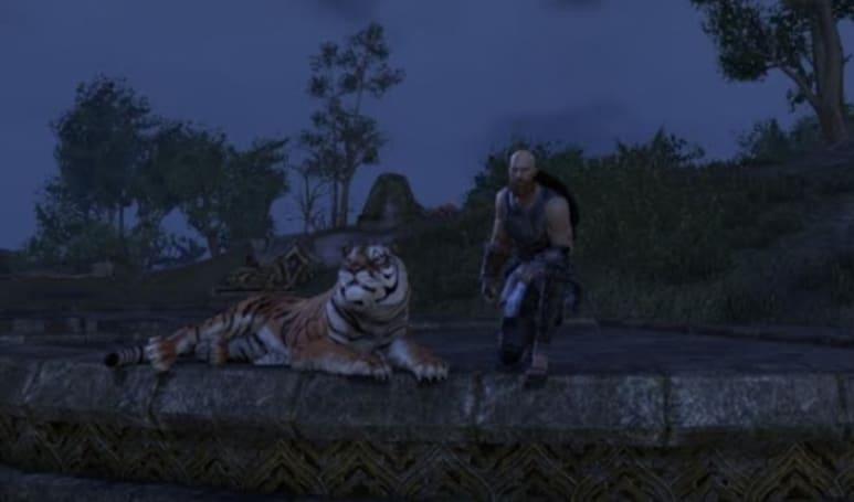 Elder Scrolls Online accidentally bans legitimate accounts