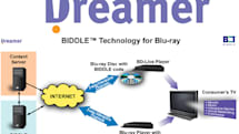 Dreamer trying to draw Java developers to its BIDDLE API