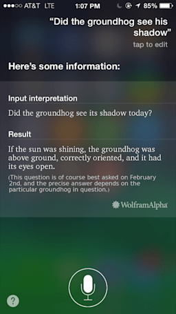 Talking to Siri: Happy Groundhog Day