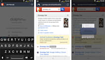 Dolphin Zero Android browser protects your privacy, hides your shame