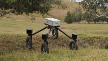 牧畜犬ロボット『SwagBot』発表。自動走行で牛や羊を移動、健康チェッカー搭載も計画中