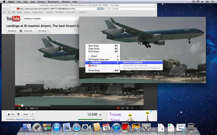 SnappyApp for the Mac lets you pin images so they are always visible