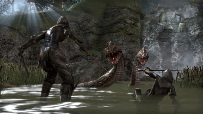 Elder Scrolls Online anticipates 'massive' test weekend