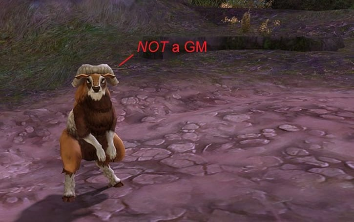 Aion 24/7 GM support 'coming very soon'