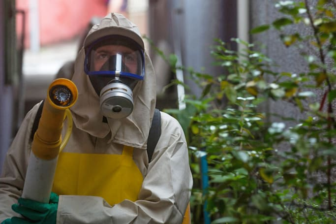 Zika virus declared an international health emergency