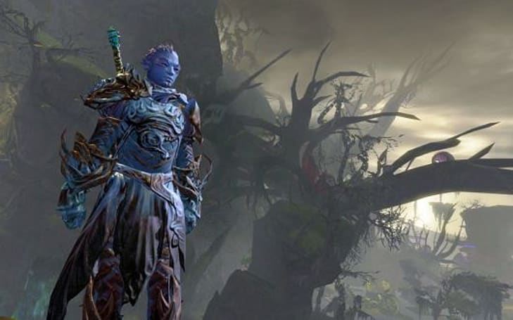 Korean analysts predict Guild Wars 2 expansion in 2013