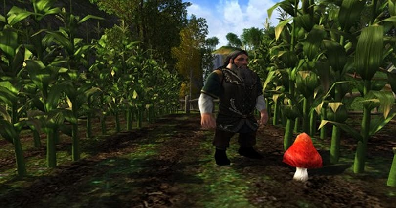 LotRO dev diary discusses mounted combat momentum, Farmers Faire goes live
