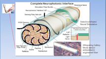 SMU and DARPA develop fiber optics for the human nervous system