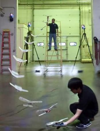 A bird in the hand thanks to a robot that can perch