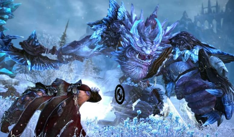 TERA outlines political systems, launches an emblem contest and premium services