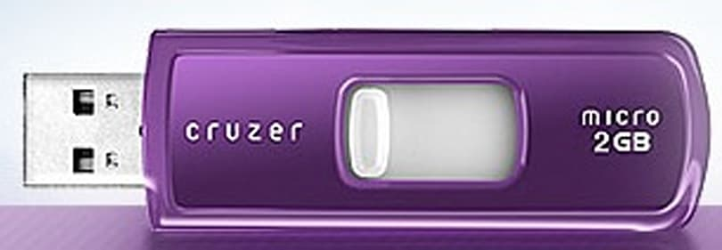Sandisk to benefit Alzheimer's Association with purple flash storage
