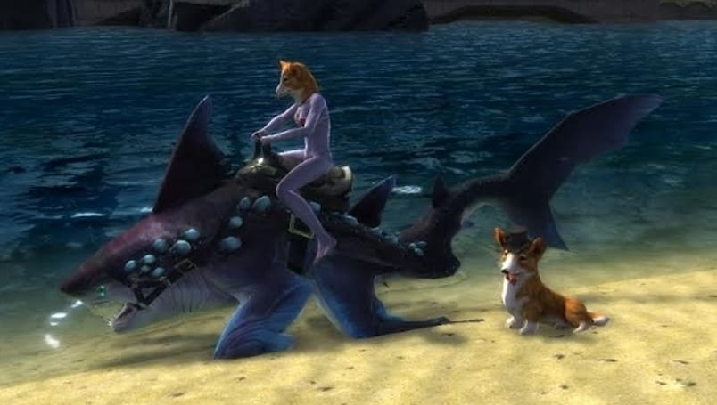 The Daily Grind: What's the dumbest mount you've ever seen?