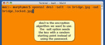 Terminal Tip: Interactive Command-line File Encryption