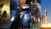 宇宙人からのコンタクトまで1500年・地雷で足を失った象に義足を・『謎の宇宙巨大建造物』長期観測へ(画像ピックアップ37)