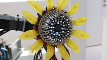 This robotic sunflower's LED seeds will cure you of that spitting habit in no time