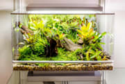 App-controlled habitat grows just about anything in your home