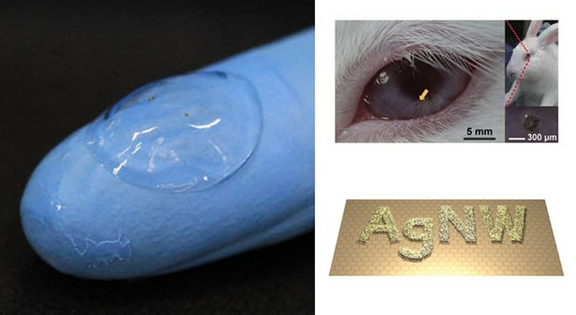 Scientists build soft, transparent contact lens displays with nanomaterials