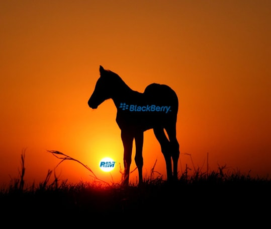 BlackBerry Colt to launch before end of 2011?