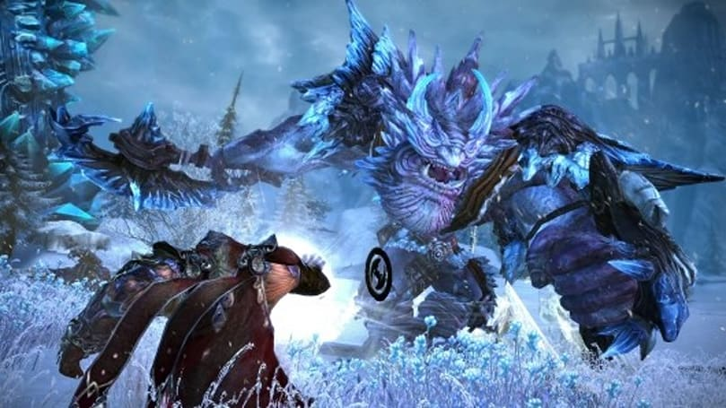 TERA's store experiences massive failure, En Masse sending out beta invites by hand