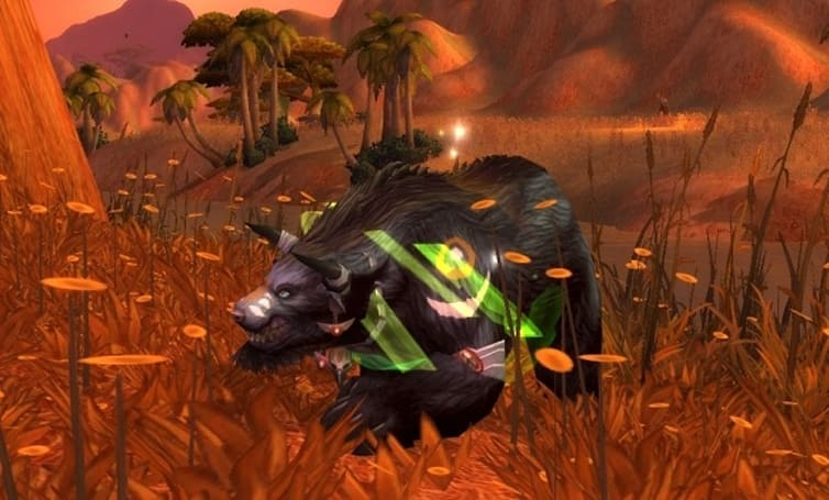 Shifting Perspectives: How top feral cats provide essential value to their guilds