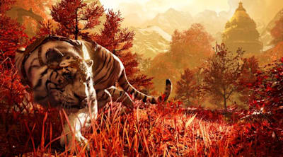 Joystiq Streams: That's a tiger in my Far Cry 4 and I'm happy to see you