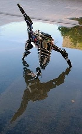 """Cornell robot is """"conscious,"""" adapts to injury"""
