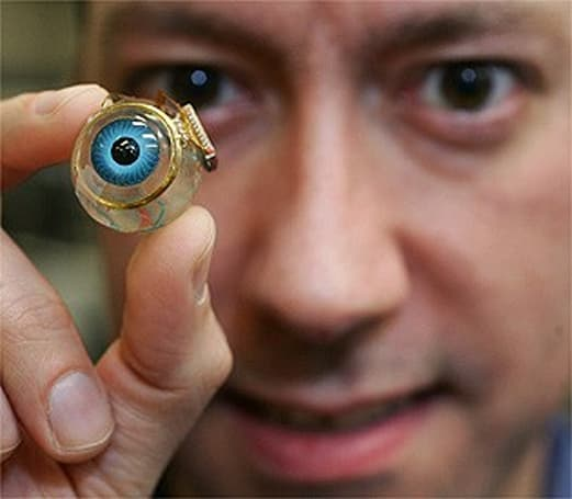 Bio-electronic implant seeks to restore partial sight