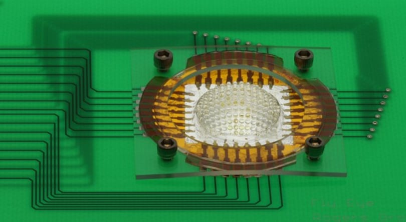 Camera inspired by insect eyes can see 180 degrees, has almost infinite depth of field