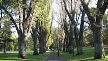 メールアドレスを与えられた公園の木、人と会話を始める