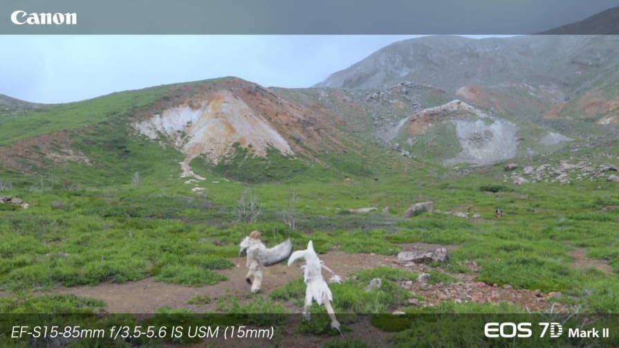 Canon 7D Mark II Sample Footage