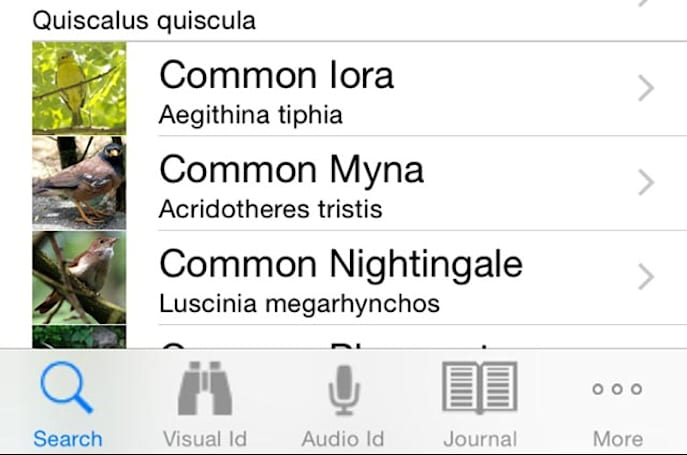 Twigle Birds: A free app for identifying birds by look and sound