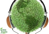 How many trees must die for iWave's Earth-friendly headphones, iPhone cases? (update)