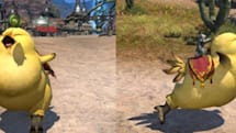 Fat Chocobo dashing out of Weight Watchers and into Final Fantasy XIV