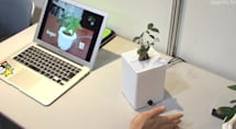 Japanese researchers show off 'interactive' plants: real leaves, artificial emotions