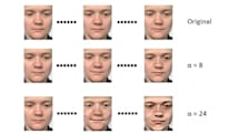 Computers learn how to spot hidden facial expressions