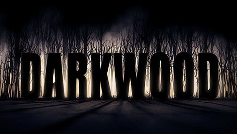 Darkwood: Not just your average 2D roguelike survival horror game