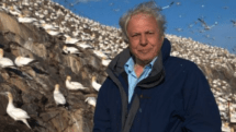 David Attenborough to produce Galapagos islands documentary for Sky 3D, be really British