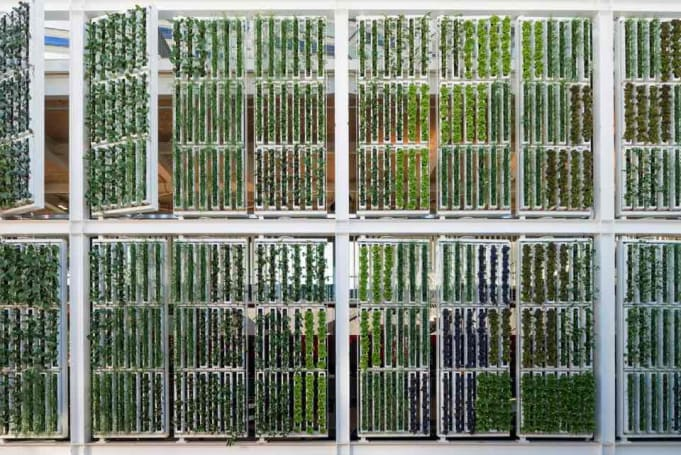 Vertical farms, smart ceilings and national pride at the world fair